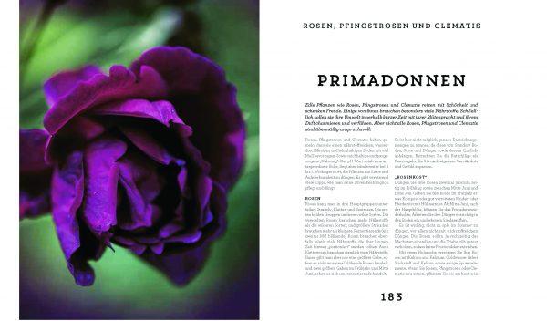 Das Buch »Dünger« aus dem Kosmos Verlag 2017 on Tina Råman, Ewa-Marie Rundquist und Justine Lagache über die Primadonnen im Garten wie Wosen, Pfingstrosen und Clematis.