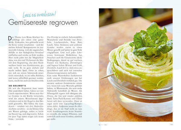 Regrowing für ein grünes Zuhause aus »My green home« von Christine Weidenweber, Jana Wischnewski-Kolbe, Anne Peter