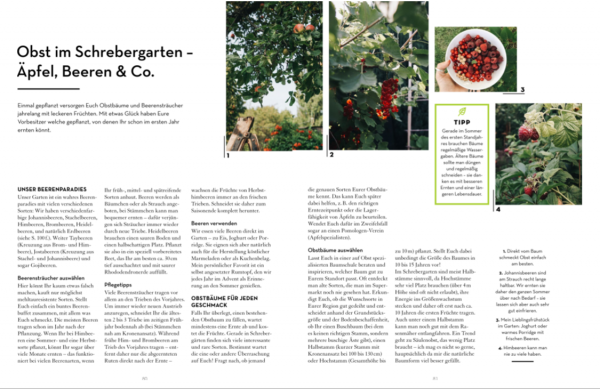 Die Obsternte aus »Abenteuer Garten« von Carolin Engwert, Kosmos Verlag 2020 – die Rezension von wohnbuchbüro