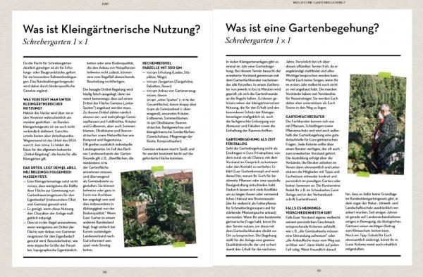 Schrebergarten, so geht das!aus »Abenteuer Garten« von Carolin Engwert, Kosmos Verlag 2020 – die Rezension von wohnbuchbüro