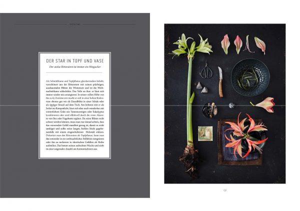 »Grünes Glück« von Sabrina Rothe, Anne Beckwilm, Simone Knauss, DVA